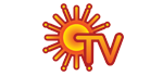 Sun TV Network Ltd. logo